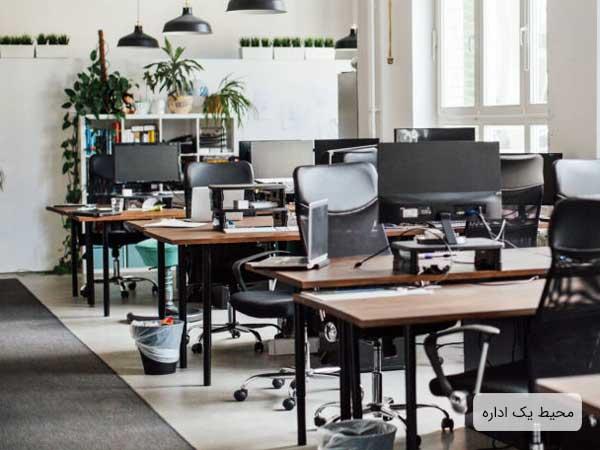 يک دفتر کار مدرن که چندين ميز و صندلي در آن قرار گرفته و بر روي هر ميز يک عدد کامپيوتر وجود دارد.